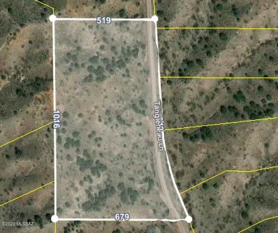 Lot 10 Tanglehead Lane ., Patagonia, AZ 85624 (#22028888) :: The Local Real Estate Group | Realty Executives