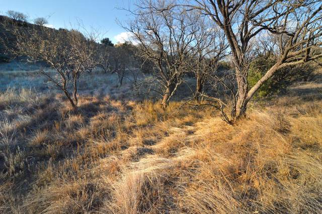 Lot 9 Tanglehead Lane ., Patagonia, AZ 85624 (#22028953) :: The Local Real Estate Group | Realty Executives