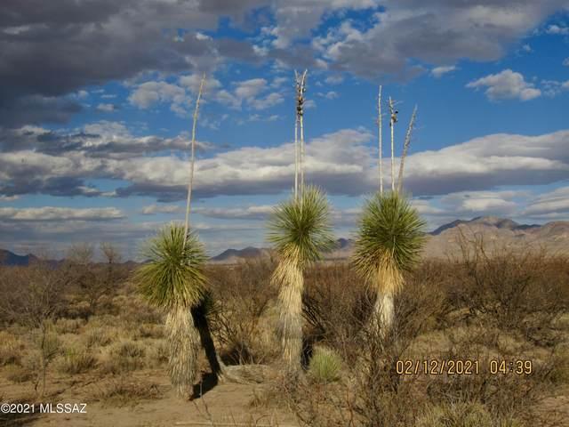 80 Acres W Badger Way 21,22, Portal, AZ 85632 (#22104616) :: Keller Williams