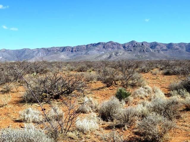 TBD S Foudy Road, Bisbee, AZ 85603 (#22106258) :: Gateway Partners International