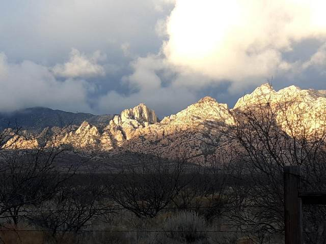 903 S Cochise Stronghold Road, Pearce, AZ 85625 (#22115408) :: The Dream Team AZ