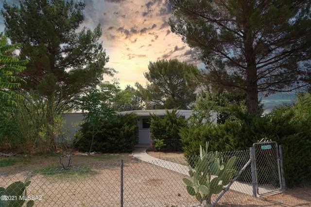 1926 N Tortoise Trail, Dragoon, AZ 85609 (MLS #22117906) :: My Home Group