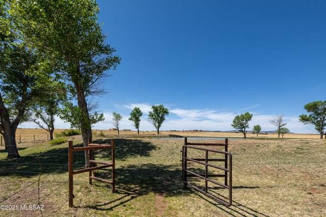 55 Milky Way, Sonoita, AZ 85637 (#22119205) :: Luxury Group - Realty Executives Arizona Properties