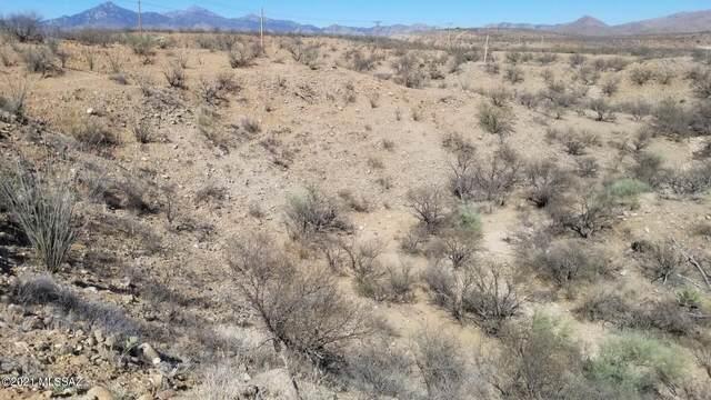 365 Camino Armadillo #164, Rio Rico, AZ 85648 (#22124358) :: Tucson Real Estate Group