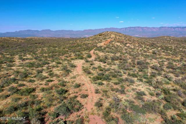 Address Not Published, San Manuel, AZ 85631 (MLS #22124578) :: The Property Partners at eXp Realty