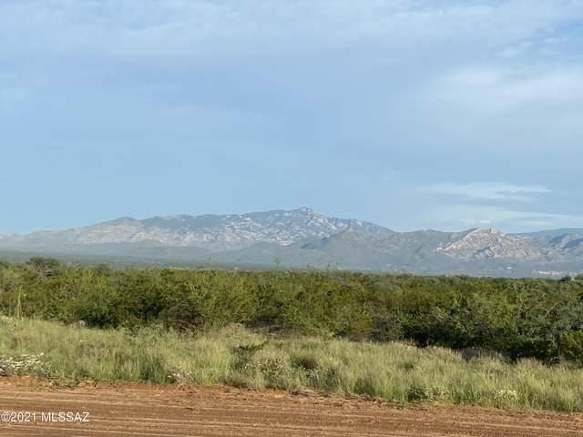 N San Pedro Ranch Road #19, Benson, AZ 85602 (#22126125) :: The Dream Team AZ