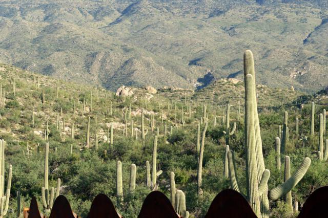 13705 E Placita Del Inca, Tucson, AZ 85749 (#21617011) :: Long Realty - The Vallee Gold Team