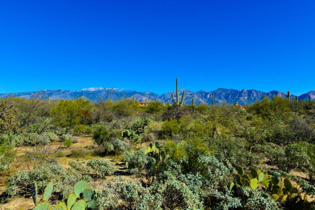 1828 W Mountain Mirage Place #154, Oro Valley, AZ 85755 (#21709766) :: Long Realty - The Vallee Gold Team