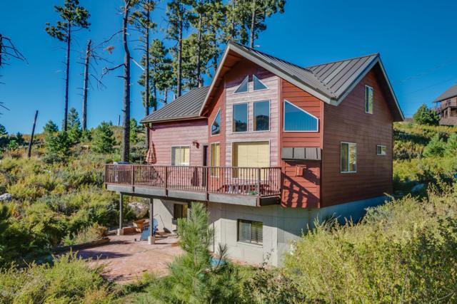 12993 N Yuma Avenue N, Mt. Lemmon, AZ 85619 (#21724946) :: Long Realty Company