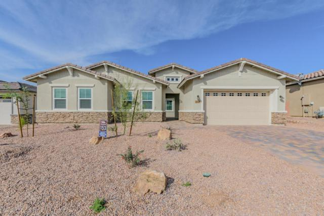 14147 N Hidden Arroyo Ps Pass N, Marana, AZ 85658 (#21725134) :: Long Realty Company