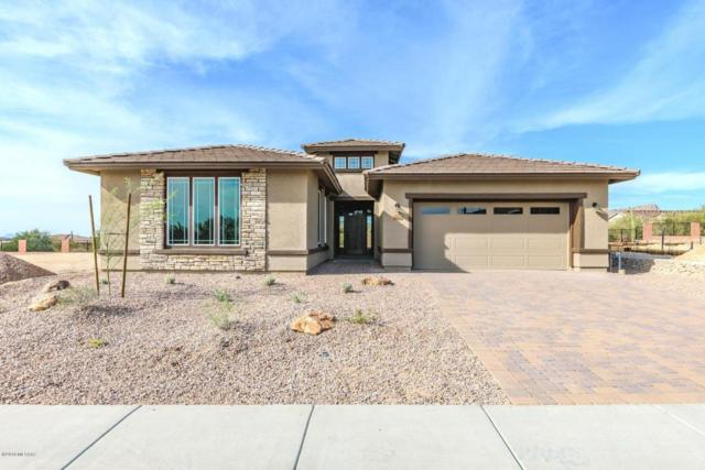 14153 N Golden Barrel Pass N, Marana, AZ 85658 (#21725139) :: Long Realty Company