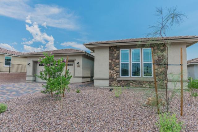 7235 W Secret Bluff Pass N, Marana, AZ 85658 (#21731373) :: Long Realty Company