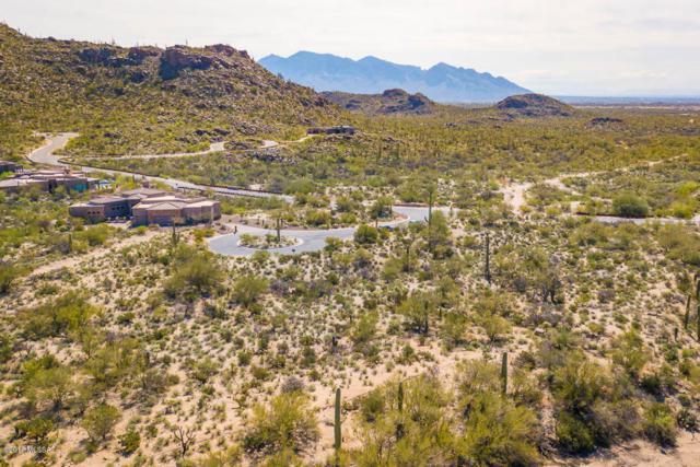13715 N Nesting Quail Place #231, Marana, AZ 85658 (#21809804) :: Long Realty Company