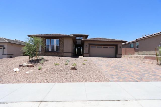 7210 W Secret Bluff Pass N, Marana, AZ 85658 (#21811363) :: Long Realty Company