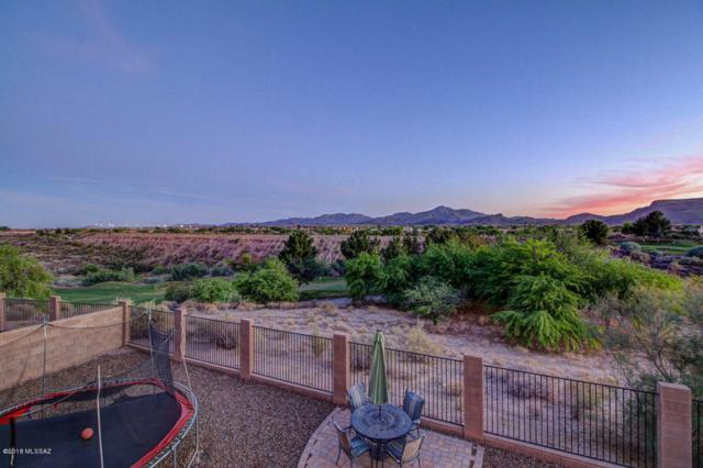 8353 N Douglas Fir Drive, Tucson, AZ 85743 (#21815673) :: Long Realty - The Vallee Gold Team