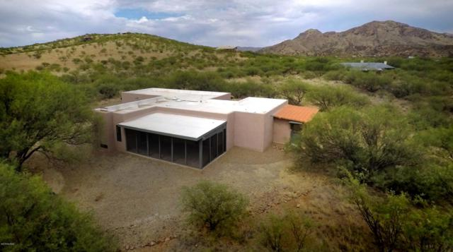 15 Harshaw Court, Patagonia, AZ 85624 (#21816527) :: Long Realty Company