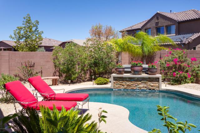 12322 N Pathfinder Drive, Marana, AZ 85658 (#21818399) :: Long Realty Company