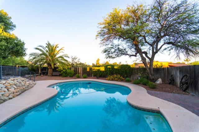 5910 N Calle Tiburon, Tucson, AZ 85704 (#21818444) :: Keller Williams