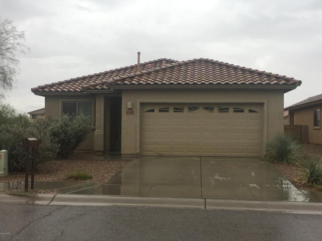 14367 N Bannerstone Court, Marana, AZ 85658 (#21819844) :: The Josh Berkley Team