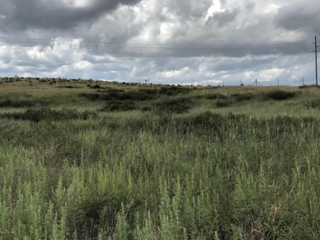 lot 54 Bronco Trail #54, Sonoita, AZ 85637 (#21823795) :: Long Realty Company