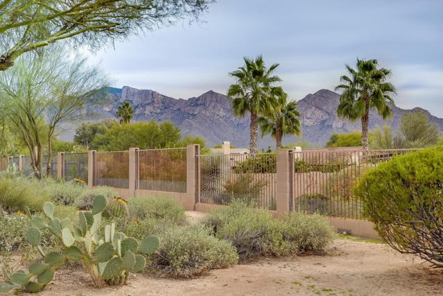 11272 N Twin Spur Court, Oro Valley, AZ 85737 (#21833137) :: Long Realty - The Vallee Gold Team
