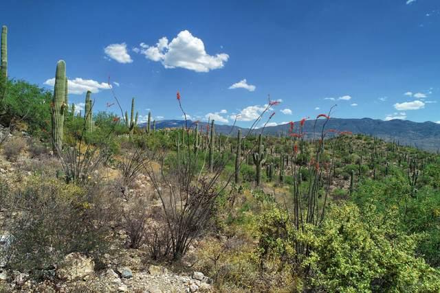 TBD E Placita Del Inca A, Tucson, AZ 85749 (#21911748) :: Long Realty - The Vallee Gold Team
