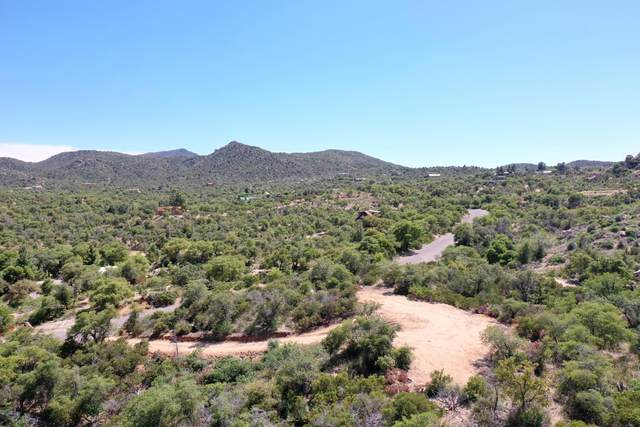 Lot 9 S Hobe Road #9, Oracle, AZ 85623 (MLS #21927389) :: The Luna Team