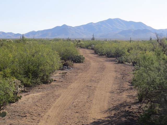 17777 S Mann Avenue #2, Sahuarita, AZ 85629 (#21929198) :: Long Realty Company