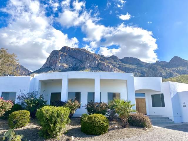 1212 E Canada Vista Place, Tucson, AZ 85704 (MLS #22001699) :: The Property Partners at eXp Realty
