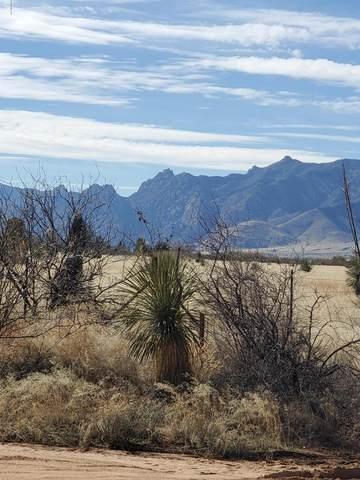 Papago Way & Quarter Horse Rd #509, Cochise, AZ 85606 (MLS #22001984) :: The Property Partners at eXp Realty