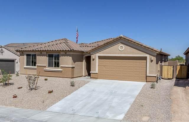 8723 N Big Ben Lane, Tucson, AZ 85742 (#22002919) :: Long Realty - The Vallee Gold Team