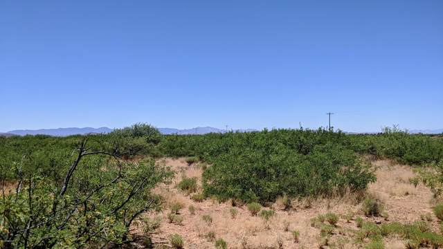 9 Acres On Hwy  181 -, Pearce, AZ 85625 (#22015541) :: AZ Power Team | RE/MAX Results