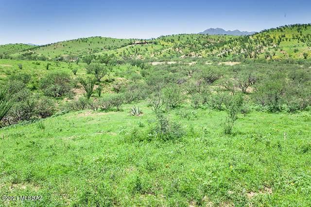 410 Circulo Montana B1, Patagonia, AZ 85624 (#22031011) :: Tucson Real Estate Group