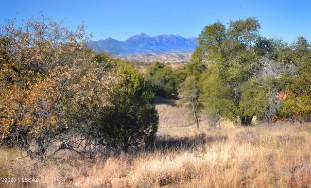 Lot 4 Franklin Lane ., Sonoita, AZ 85637 (#22031842) :: Long Realty - The Vallee Gold Team