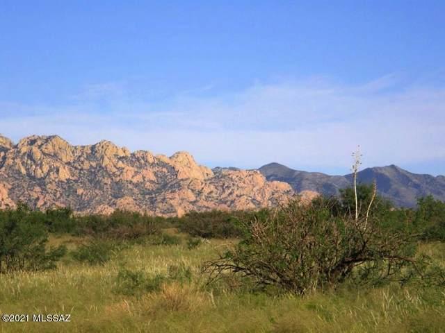 49 N Old Javelina Trail #49, St. David, AZ 85630 (#22101329) :: Long Realty Company