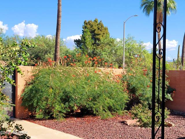 2308 E Beverly Drive, Tucson, AZ 85719 (#22125292) :: Kino Abrams brokered by Tierra Antigua Realty
