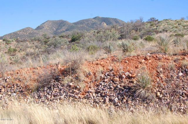 Lot 33 Mesa Trail/ Copper Court 33, 29, Patagonia, AZ 85624 (#21208500) :: Long Realty - The Vallee Gold Team