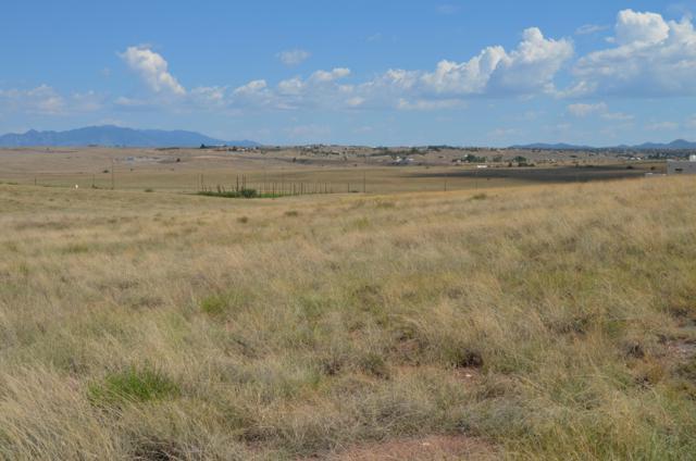 20 La Montana Court, Sonoita, AZ 85637 (#21620835) :: Long Realty Company