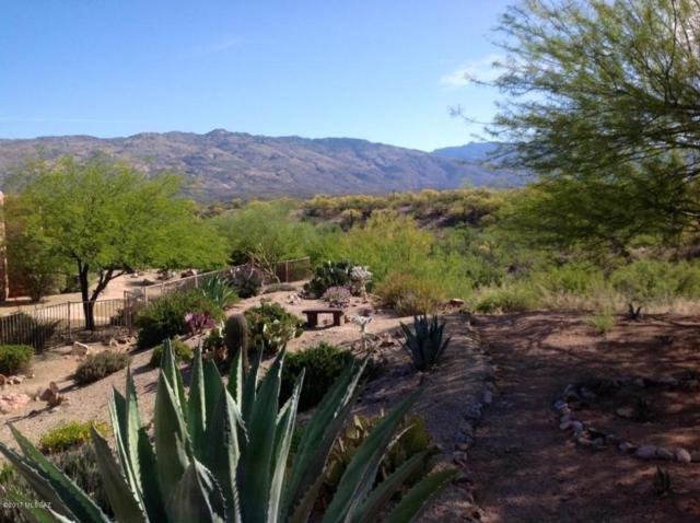 7831 S Galileo Lane, Tucson, AZ 85747 (#21729438) :: Long Realty Company