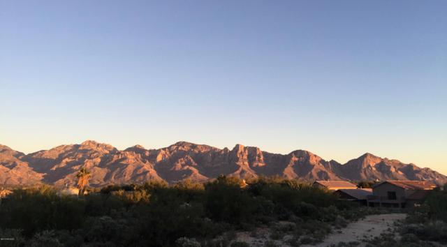 N Rancho Vistoso Blvd Boulevard #1, Oro Valley, AZ 85755 (#21827171) :: Long Realty - The Vallee Gold Team