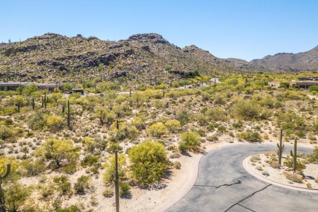 13715 N Nesting Quail Place #231, Marana, AZ 85658 (#21912217) :: Long Realty - The Vallee Gold Team