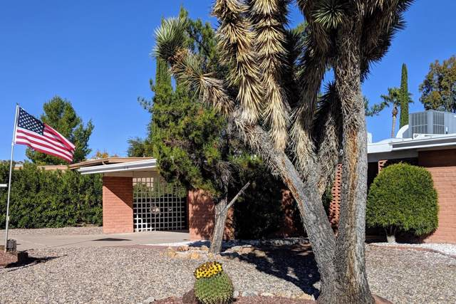 316 W Via Bacanora, Green Valley, AZ 85614 (#21931550) :: Long Realty - The Vallee Gold Team