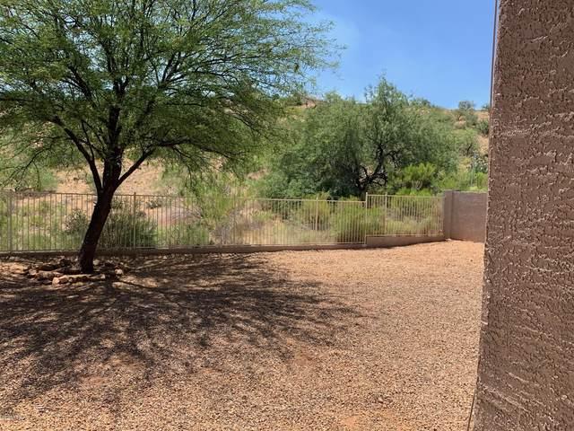 39335 S Old Arena Drive, Tucson, AZ 85739 (#22014954) :: AZ Power Team | RE/MAX Results