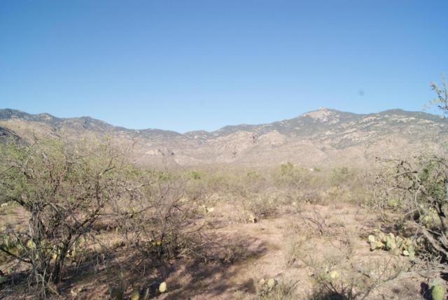 6411 S X9 Ranch Road #0000, Vail, AZ 85641 (#21306858) :: Long Realty Company