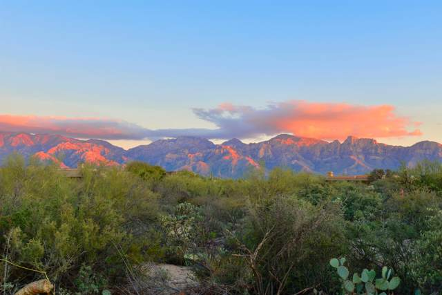15 W Shimmering Sand Place Lot 493, Oro Valley, AZ 85755 (#21918864) :: Long Realty Company