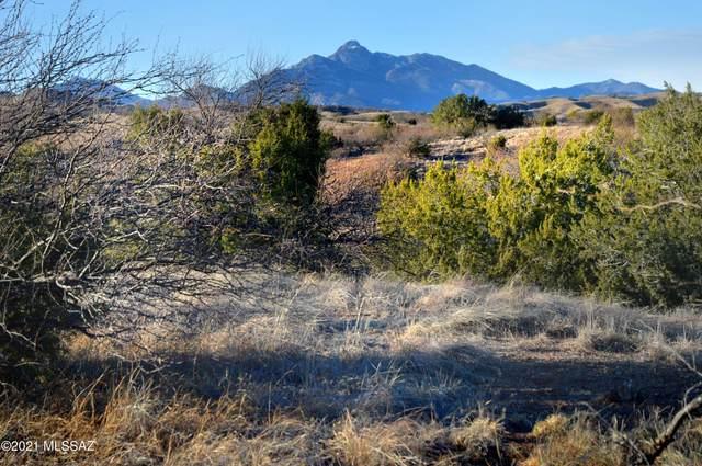 7 A Paseo De La Liebre #5A, Patagonia, AZ 85624 (#21704070) :: The Dream Team AZ