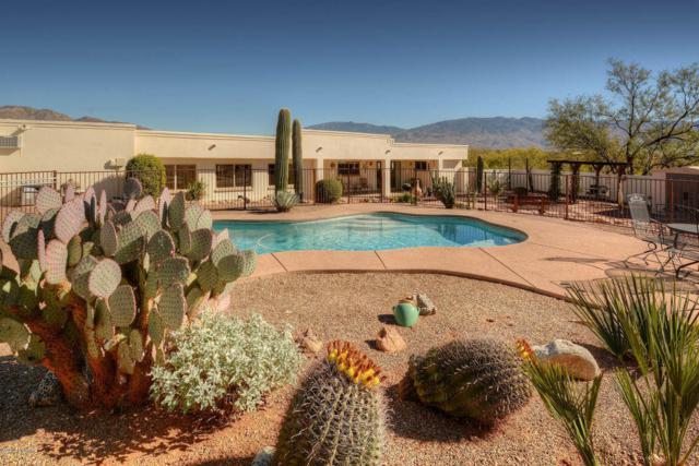 3001 N Sourdough Place, Tucson, AZ 85749 (#21801110) :: The Josh Berkley Team