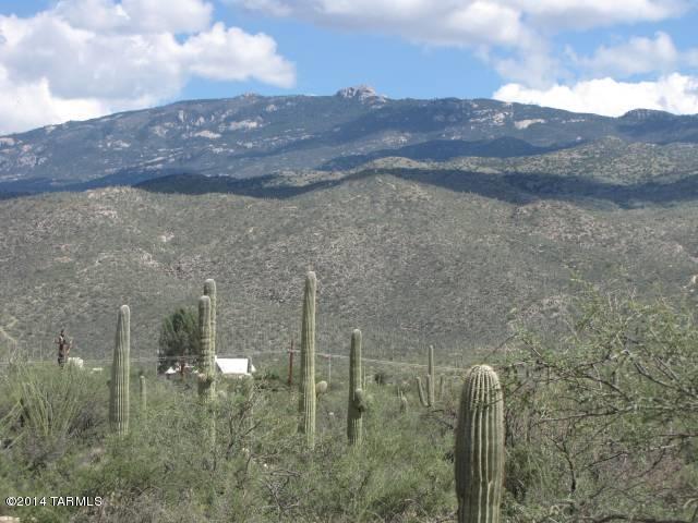 14055 E Camino Cartamo #73, Tucson, AZ 85749 (#21427068) :: Long Realty - The Vallee Gold Team