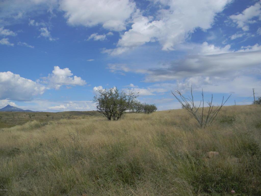 54 Lado De Loma Drive - Photo 1