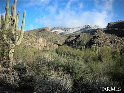 6615 N Eagle Ridge Drive #3, Tucson, AZ 85750 (#21633016) :: Long Realty - The Vallee Gold Team